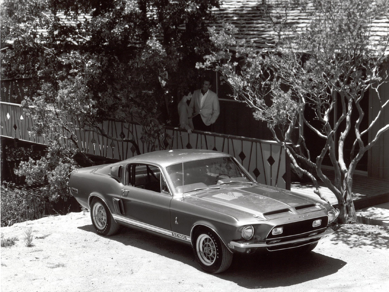AmericanMuscle brings the classic style of the early Mustangs with Mustang