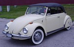 vw-beetle-w-roadrunner.jpg
