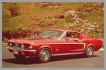ford-mustang-fastback-custom-boss-351.jpg
