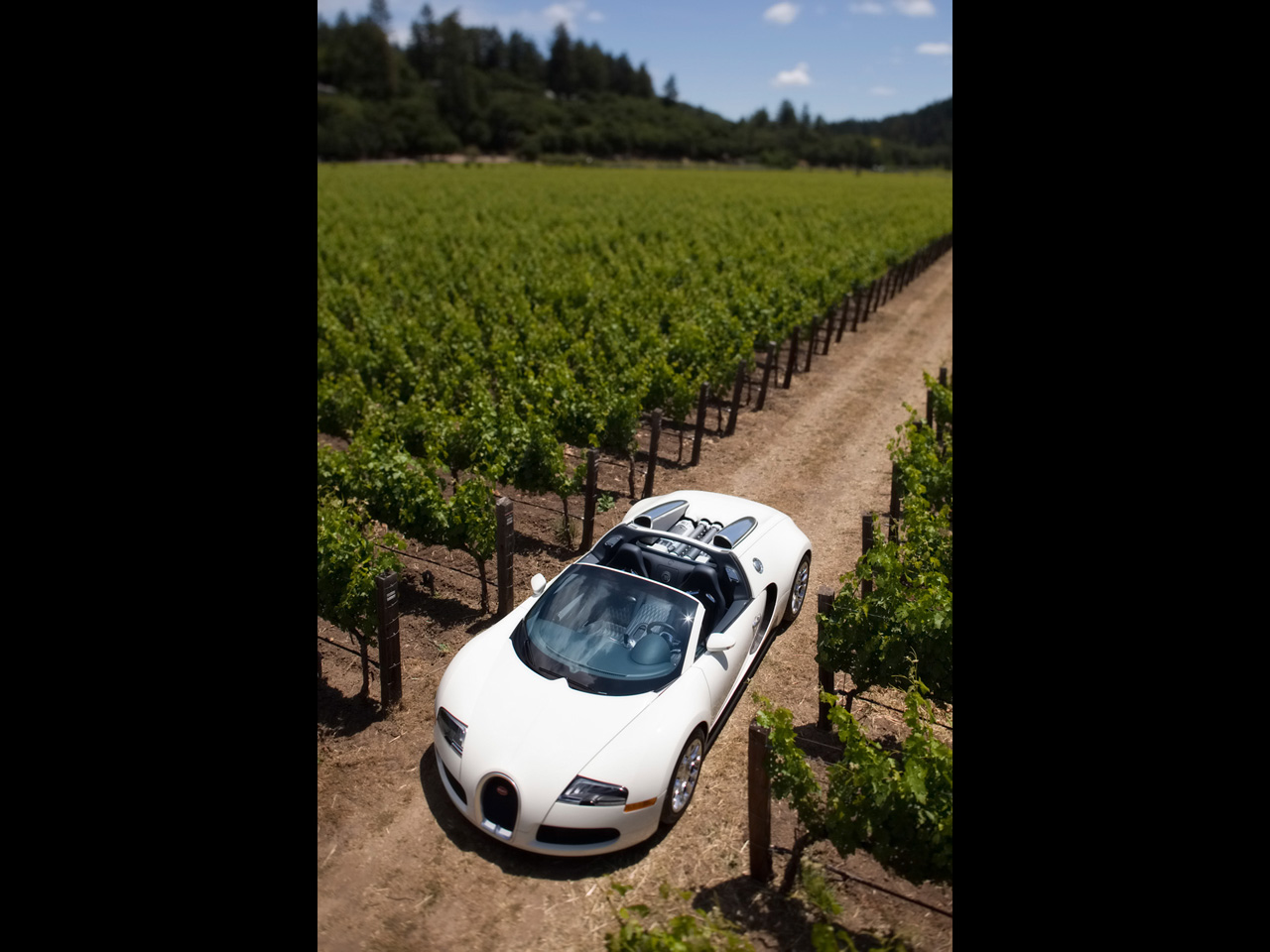 2010 Bugatti Veyron 16.4 Grand Sport in Napa Valley Wallpapers by Cars-wallpapers.net