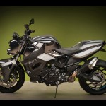 2012 Vilner Custom Bike BMW F800 R Predator