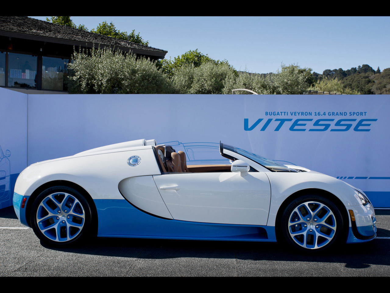 Bugatti Wallpapers By Cars-wallpapers.net